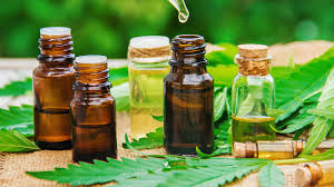 Everything to know about CBD Store