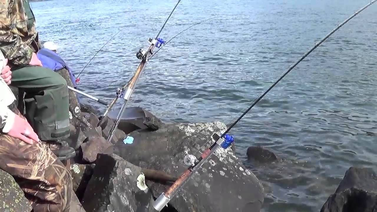 Why should you use pier nets?